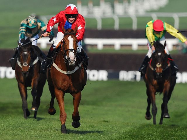 Sire De Grugy won the Champion Chase in fine style