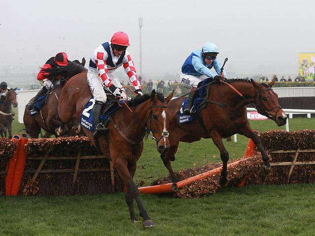 Fingal Bay justified favouritism at Cheltenham