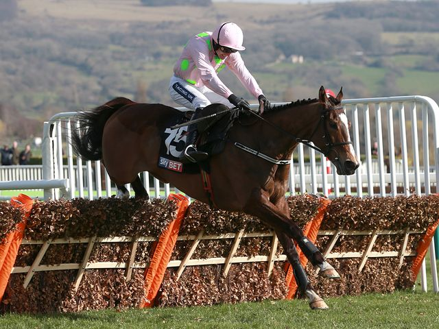 Vautour wings the last on his way to an impressive success