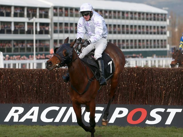 Holywell completed back-to-back wins at Cheltenham
