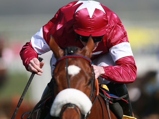 Tiger Roll won the Triumph Hurdle