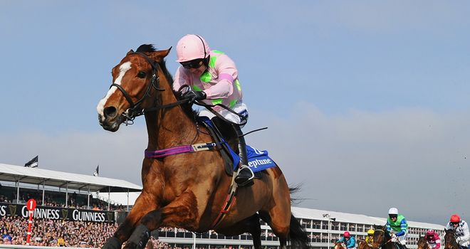 Faugheen: Drops back in trip at Punchestown