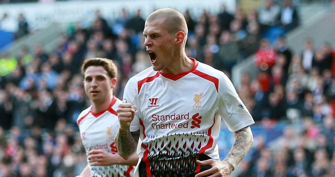 Martin Skrtel: The Slovakian has become an important part of Brendan Rodgers' Liverpool this season