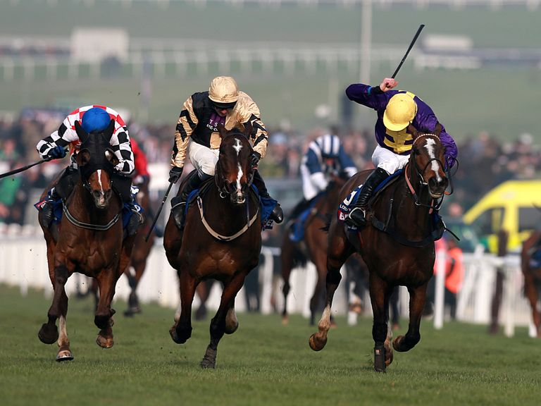 The Giant Bolster (left): Unlikely to run again this season