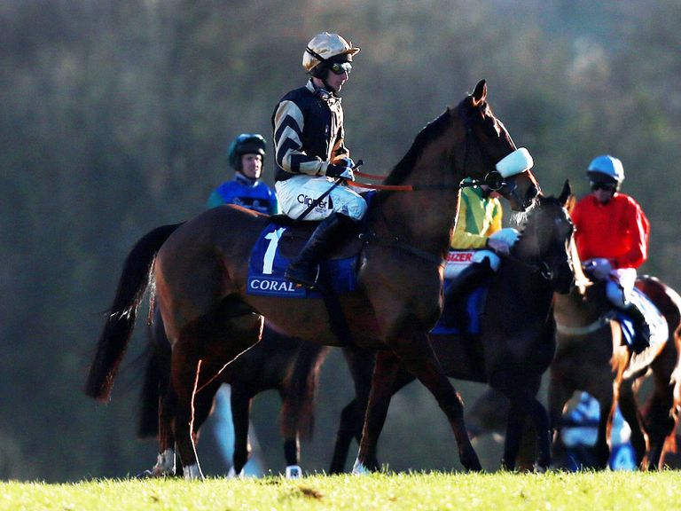 Tidal Bay: Leads the Grand National entries