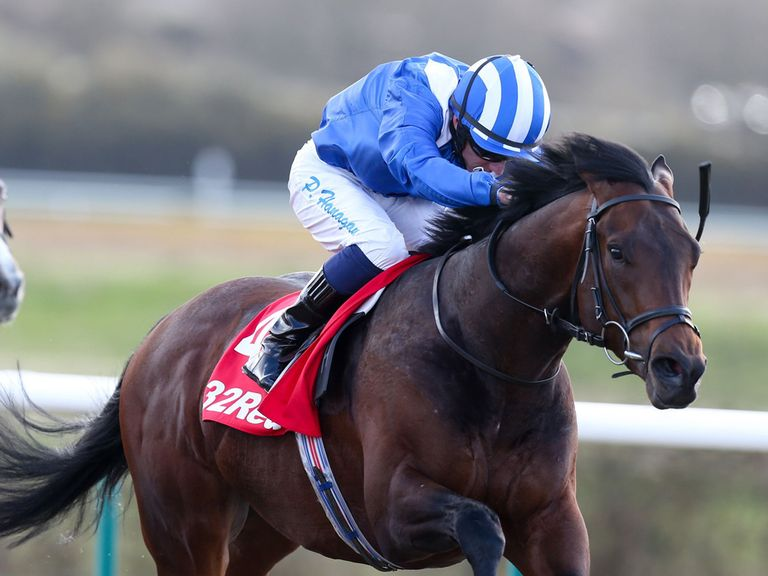 Ertijaal: Worth backing in the Sky Bet City Of York Stakes