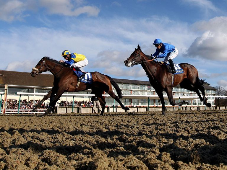 Robin Hoods Bay (left) ridden by Luke Morris beats Windhoek (blue colours) ridden by Silvestre De Sousa