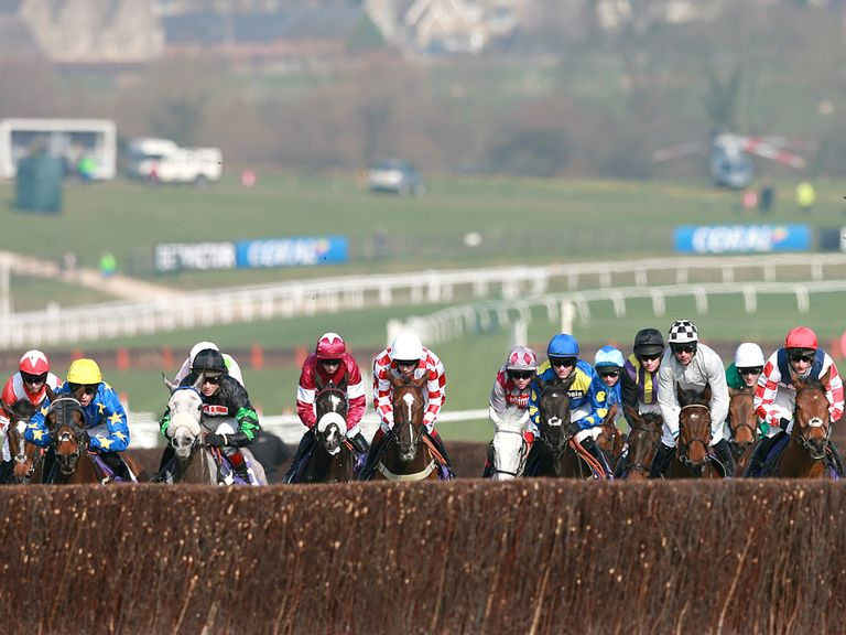 The New Course will be watered at Cheltenham
