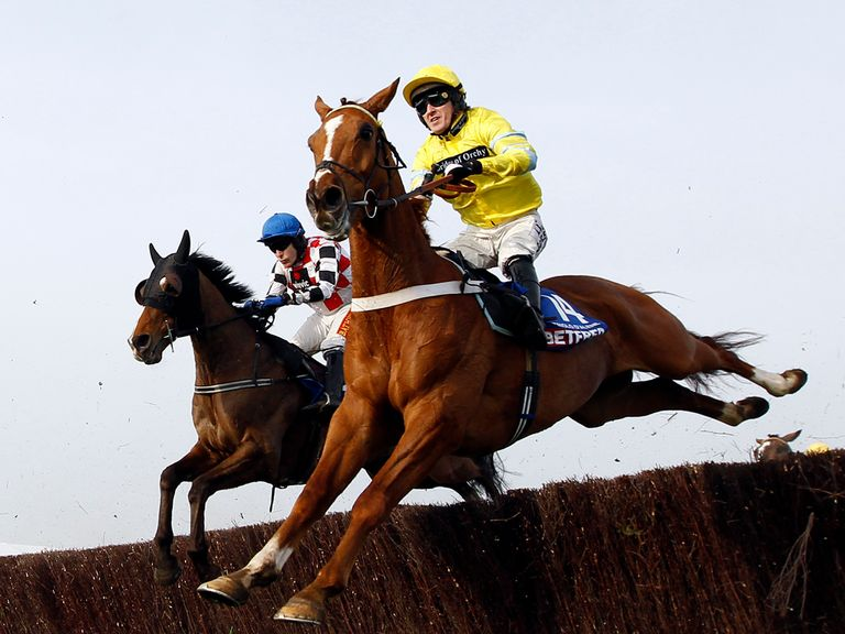 Triolo D'Alene: On course for the Crabbie's Grand National