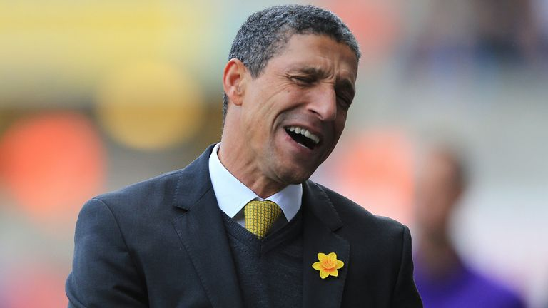 Chris Hughton: Paid the price for a lack of cutting edge in front of goal