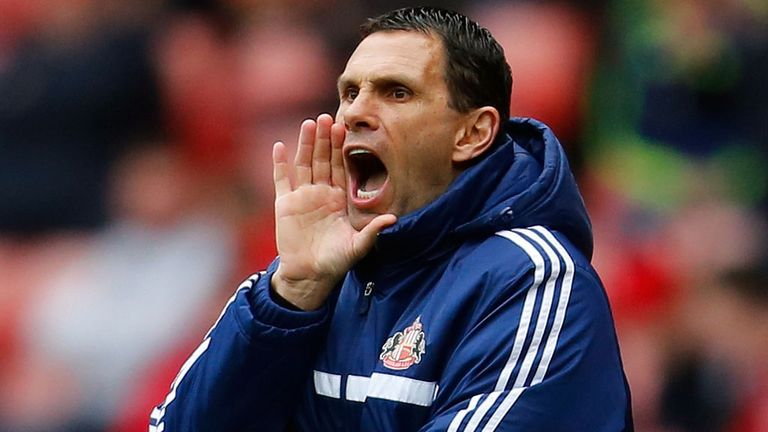 Gus Poyet: Keen to add options to Sunderland's squad