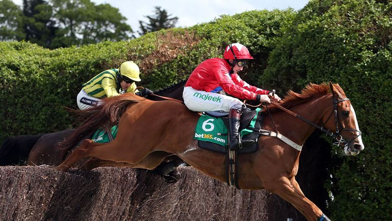 Sire De Grugy: Back in work following surgery on ankles