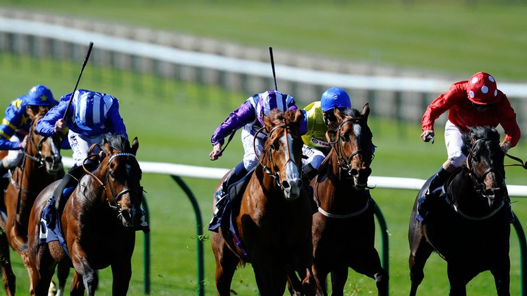 Parbold (right): Returns to Newmarket on Saturday