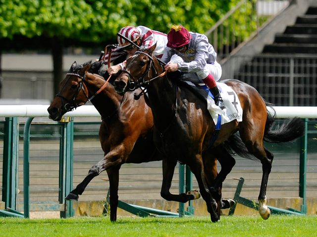 Cirrus Des Aigles: Should handle the course