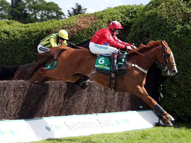 Sire De Grugy on his way to victory at Sandown