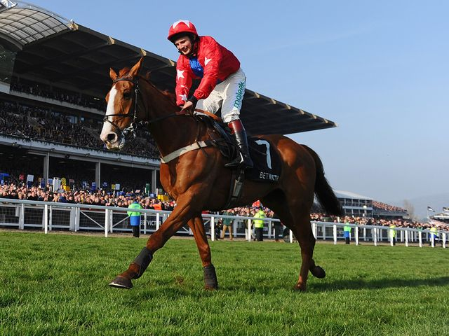 Sire De Grugy: Sandown hopeful