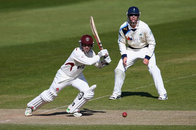 Johann Myburgh: Helped Somerset secure draw