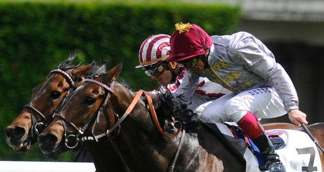Treve: Flattered by her Arc win?