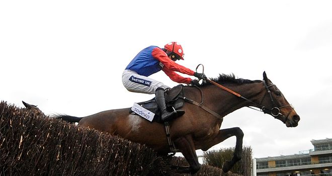 Rocky Creek popular with our panel for the Crabbie's Grand National