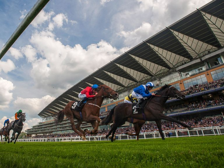 Ascot: Ground changed following significant rain