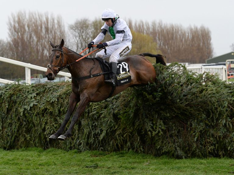 Pineau De Re: Won this year's Crabbie's Grand National.