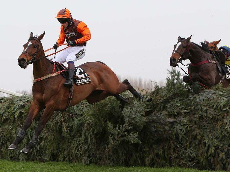 Warne leads a loose horse and Mossey Joe over the final fence