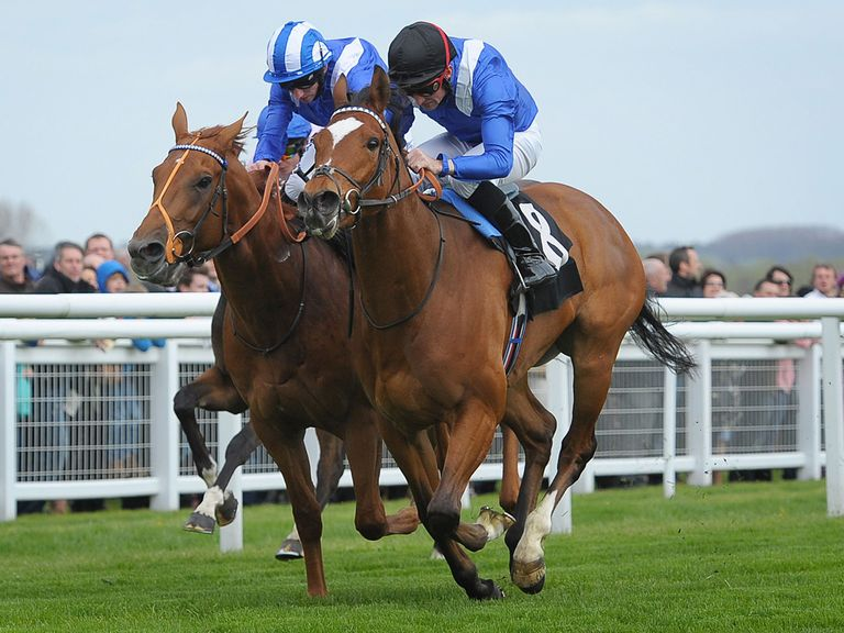 Matalleb (right) ridden by Dane O'Neill beats Mutakayyef ridden by Paul Hangan