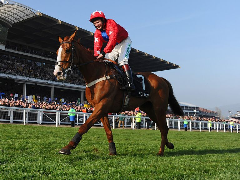 Sire De Grugy: One of the stars on show at Sandown