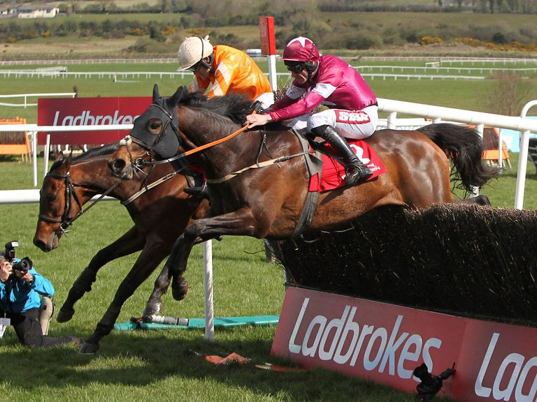 Twinlight: One of Donn's best bets at Punchestown this afternoon