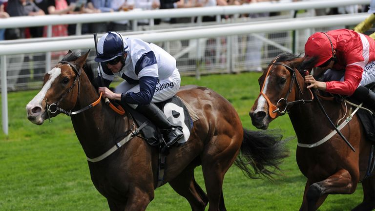 Patience Alexander: York hopeful