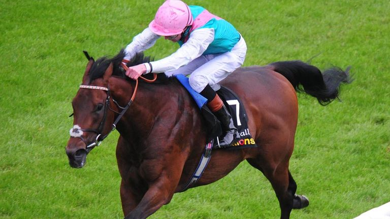 Kingman: Intended runner in the Sussex Stakes