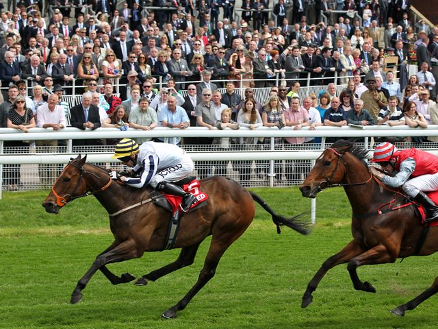 Monsieur Joe: Bids to follow up success at York's May meeting