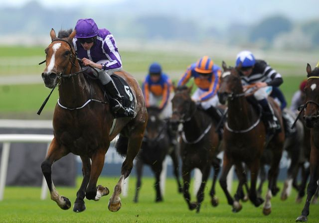 Marvellous: Ran out the impressive winner of the Irish 1000 Guineas.