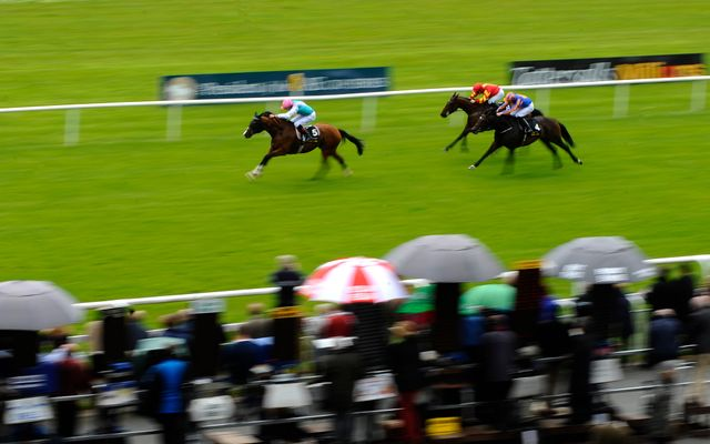 Noble Mission: Landed the Tattersalls Gold Cup at the Curragh.