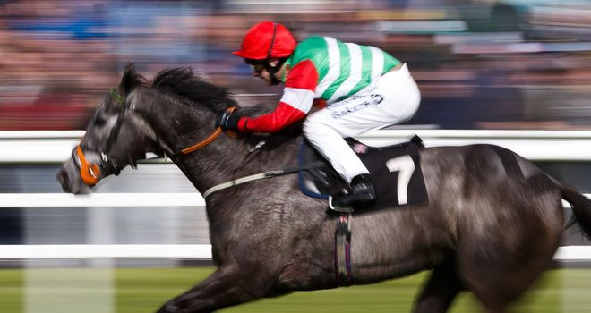 Dark Emerald: Shergar Cup Mile hopeful