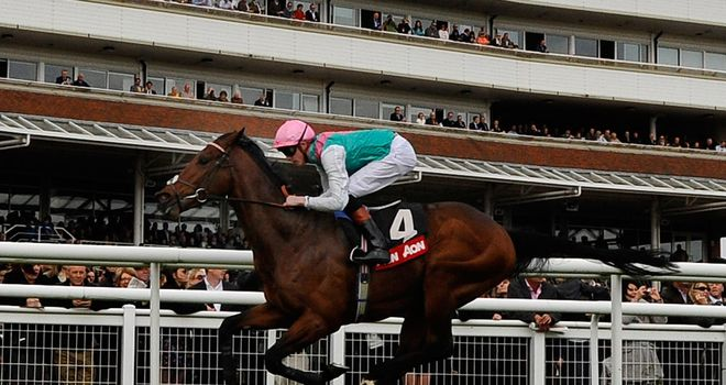 Kingman: Could head to Curragh later in the month