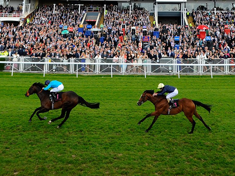 Brown Panther leads home Hillstar at Chester