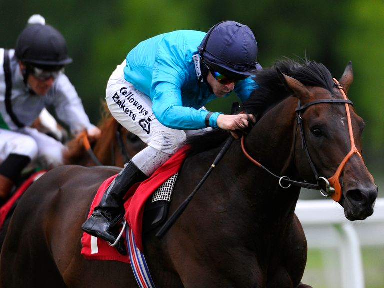 Brown Panther: Can prove a popular winner of the Ascot Gold Cup