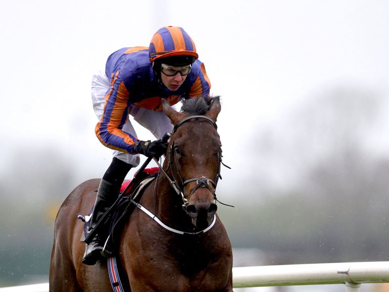 The Great War saunters to victory under Joseph O'Brien