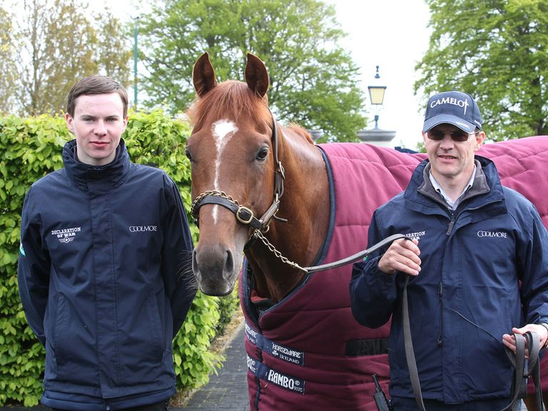 Australia poses for the cameras on a stable tour (Caroline Norris: Coolmore)