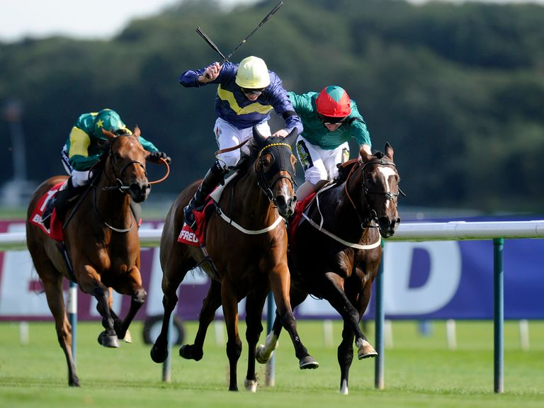 Thistle Bird: Her half-brother caught the eye at Windsor