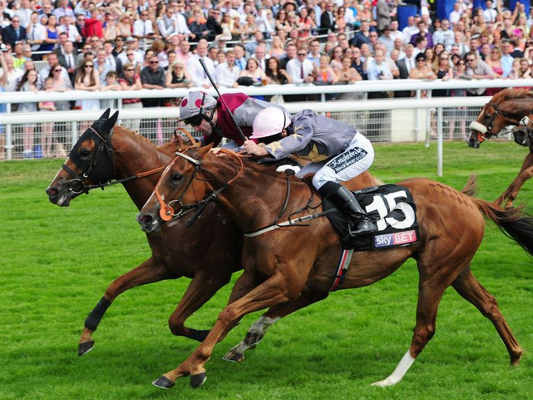 Tropics: Knows what's required to get his head in front on the Knavesmire