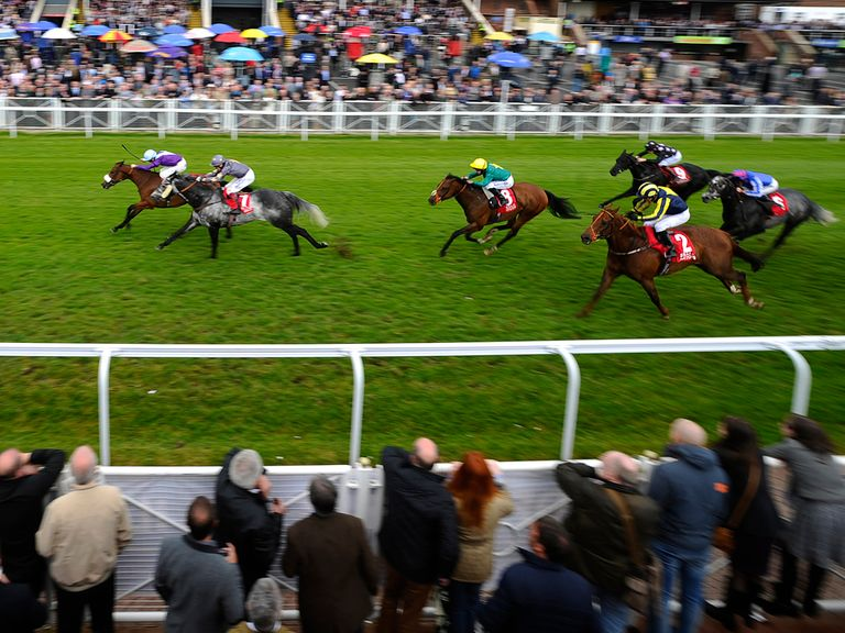 Swan Song: Would be poignant winner - and holds every chance