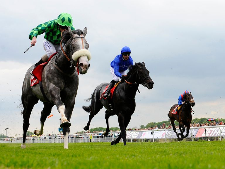 The Grey Gatsby (l) pulls clear of True Story (c) to win the Dante
