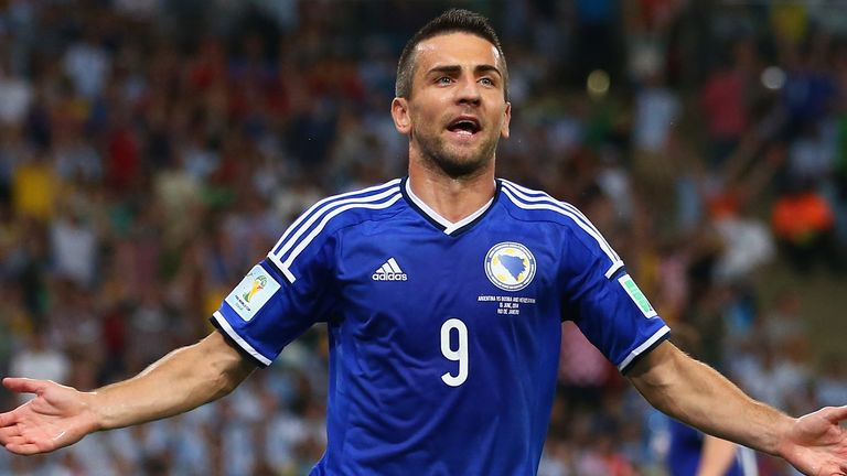 Vedad Ibisevic: New deal with Stuttgart