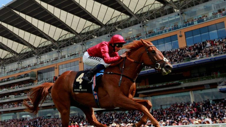 Eagle Top could return to Ascot
