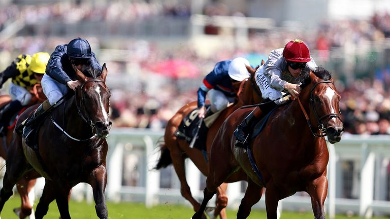 Toronado (right) will take on Kingman at Goodwood