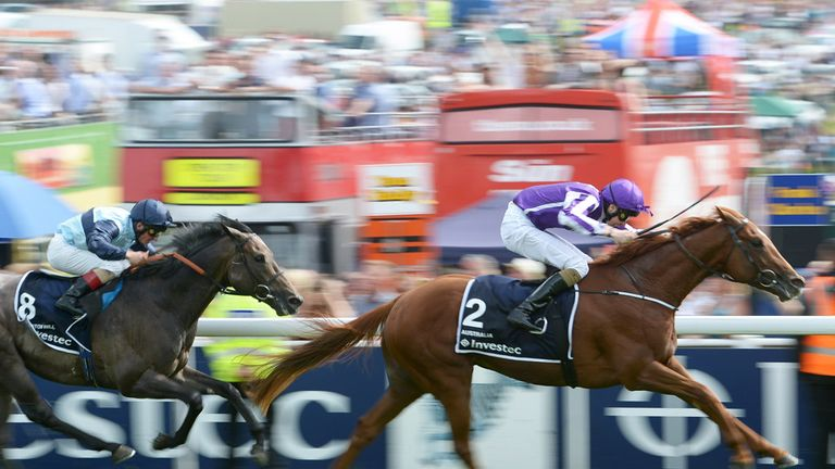 Australia could head for the Irish Derby at the Curragh