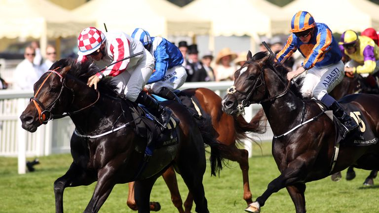 Slade Power: Comes out top-rated on Timeform's figures