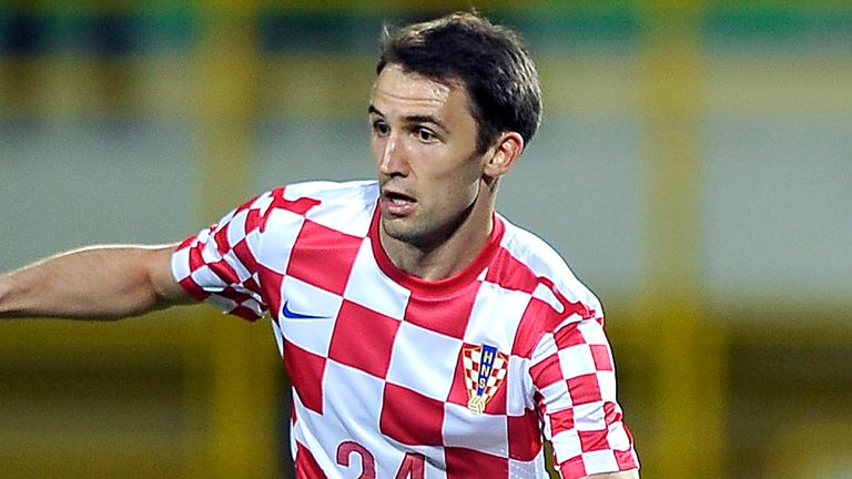 Milan Badelj: Set to join Fiorentina on a four-year deal from Hamburg
